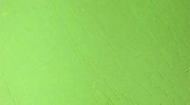 Оливковое Дерево B537-FGP