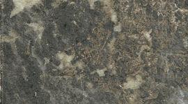 183О Королевский опал (мт, гл)