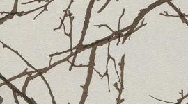 45 Лесные ветви (мт, гл)