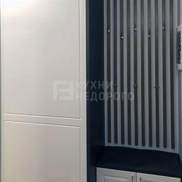 Шкаф-купе Винтон - фото 3