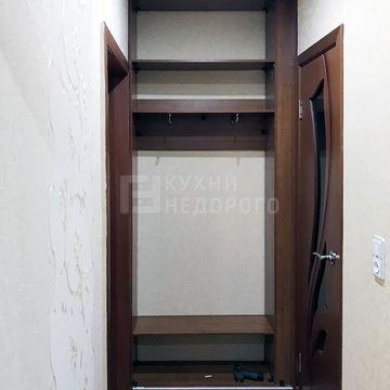 Шкаф-купе Хомейн - фото 2