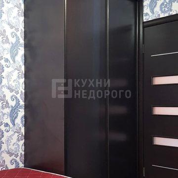 Шкаф-купе Делл - фото 2