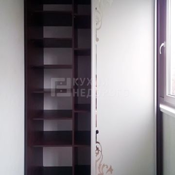 Шкаф-купе Данидин - фото 2